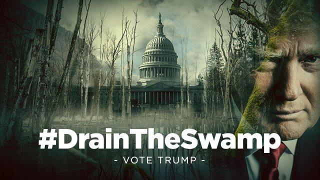 Image result for Trump vs the swamp