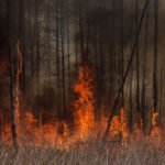 April update: a month of fire in Ukraine