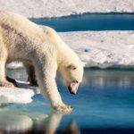Biosphere warming in numbers