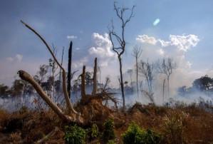 The future of the Amazon rainforest – Sonia Bone Guajajara