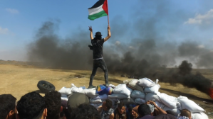 On Contact: Gaza with Abby Martin and Mike Prysner