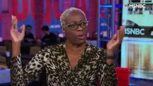 What is a 'practical' democratic candidate? Sanders co-chair Nina Turner has some thoughts